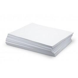 Cartulinas Blanca 250gr A4 - 10 Unidades