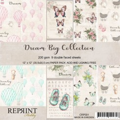 Dream Big - Reprint