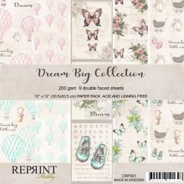 Dream Big - Reprint