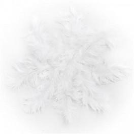Plumas blancas